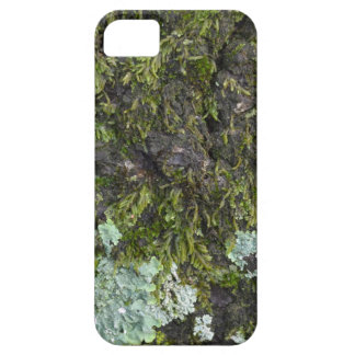 Real Camo Phone Case iPhone 5/5S Cases