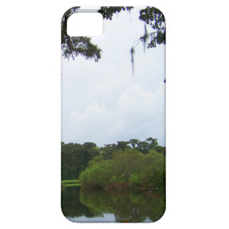 Real Florida iPhone 5 Cover
