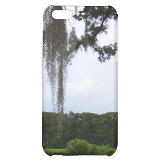 Real Florida iPhone 5C Cover