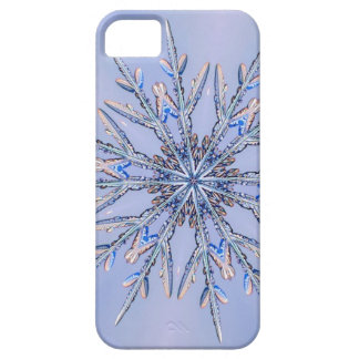 Real Snowflake Fractal 6 iPhone 5 Cases