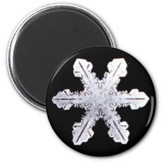 Real Snowflake Picture 6 Cm Round Magnet