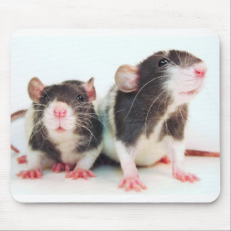 Real Women Own Rats! Mouse Mat