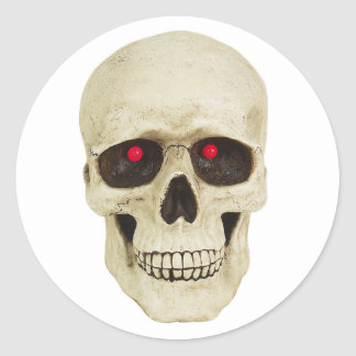 Realistic Skull stickers