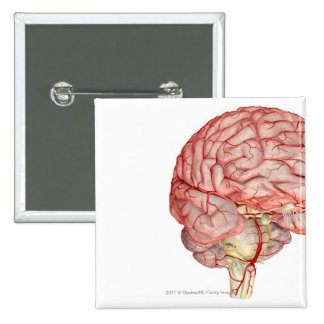 Realitic rendering of the human brain 15 cm square badge