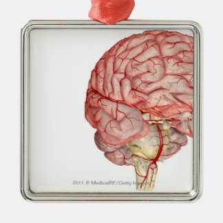 Realitic rendering of the human brain christmas ornament
