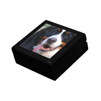 Really Cute Bernese Mountain Dog Gift Box