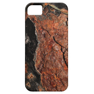 Really Rusty iPhone 5 Case