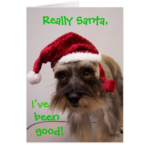 Really Santa! Cards