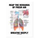 Reap The Rewards Of Fresh Air Breathe Deeply Postcard