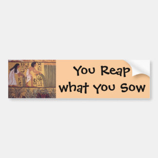 Reap what you Sow bumper sticker