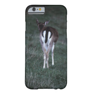 Rear view of a deer , New Zealand Barely There iPhone 6 Case