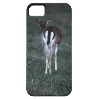 Rear view of a deer , New Zealand Case For The iPhone 5