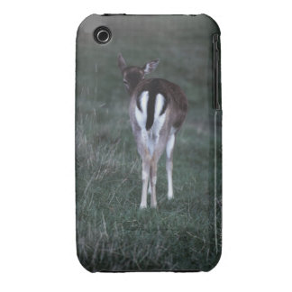Rear view of a deer , New Zealand iPhone 3 Cover