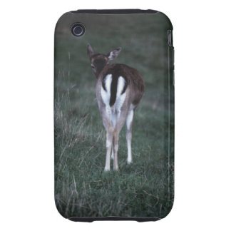 Rear view of a deer , New Zealand iPhone 3 Tough Cover