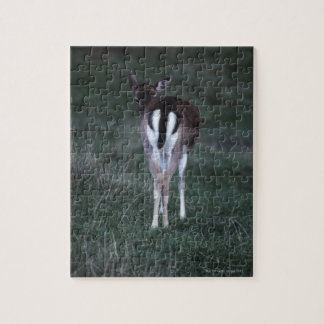 Rear view of a deer , New Zealand Jigsaw Puzzle