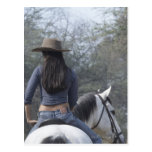 Rear view of a woman riding a horse postcards