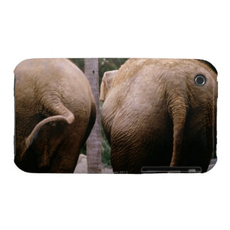 Rear view of Asian elephants Case-Mate iPhone 3 Case