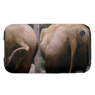 Rear view of Asian elephants Tough iPhone 3 Covers