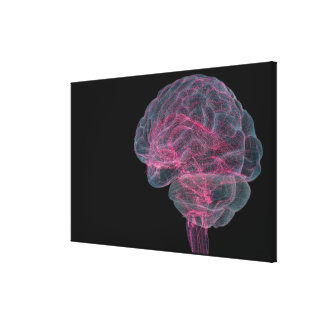 Rear view of the human brain canvas print