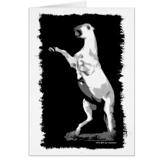 Rearing Andalusian Stallion Greeting Card