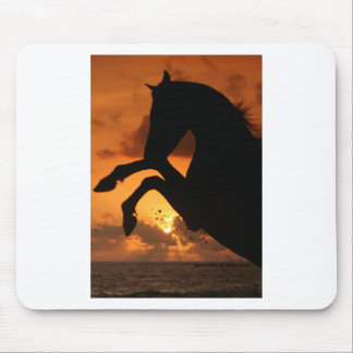 Rearing in the Sunset Mouse Pad