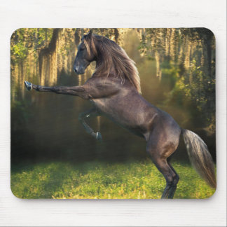 Rearing Stallion Mouse Pad