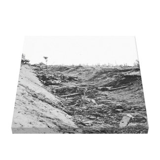 Rebel dead in trench after Battle of Antietam Canvas Print
