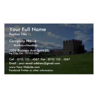 Reconstruction of Hadrians Wall, Vindolanda Museum Business Cards