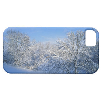 Record snow in Louisville, Kentucky. Barely There iPhone 5 Case