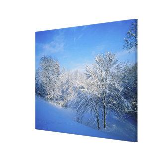 Record snow in Louisville, Kentucky. Canvas Print