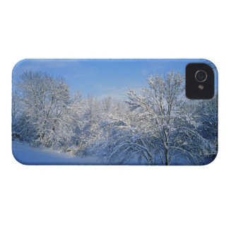 Record snow in Louisville, Kentucky. iPhone 4 Case