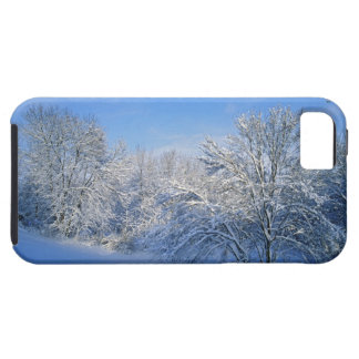 Record snow in Louisville, Kentucky. iPhone 5 Cases