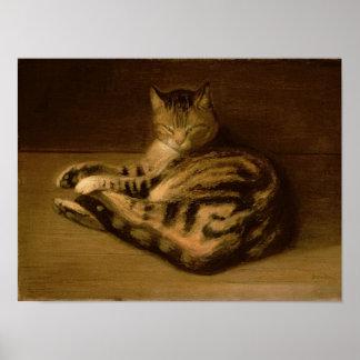 Recumbent Cat, 1898 Poster