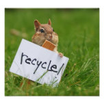 Recycling chipmunk poster