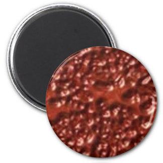 red005 fridge magnets