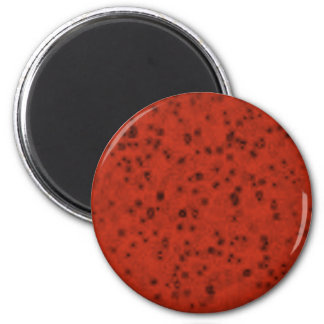 red077 6 cm round magnet
