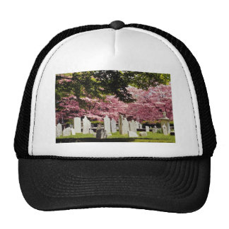 Red 18th century colonial graveyard flowers cap