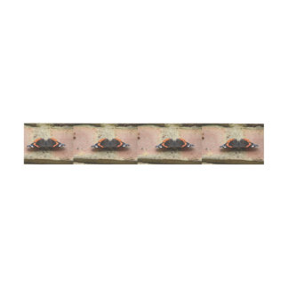 Red Admiral Butterfly Belly Bands Invitation Belly Band