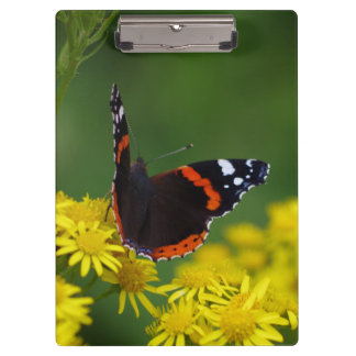 Red Admiral Butterfly Clipboard