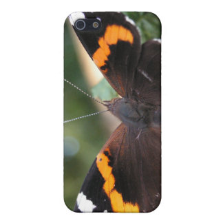 Red Admiral Butterfly iPhone Case iPhone 5/5S Covers