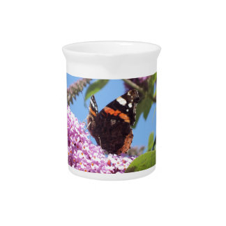 Red Admiral Butterfly on Buddleia Pitcher