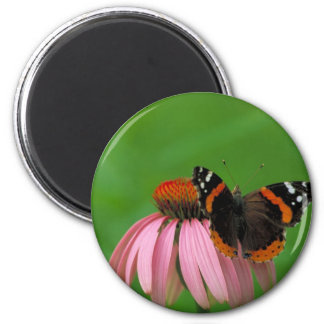 Red Admiral Butterfly on Purple Cone Flower 6 Cm Round Magnet