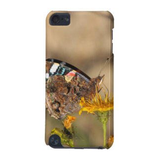 red admiral on yellow flower iPod touch 5G case