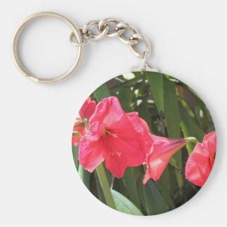 Red Amaryllis Key Ring