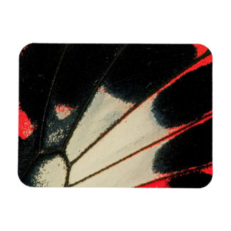 Red and black butterfly close-up rectangular photo magnet