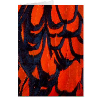 Red And Black Feather Abstract Card