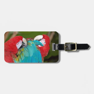 Red and blue macaw parrot print luggage tag