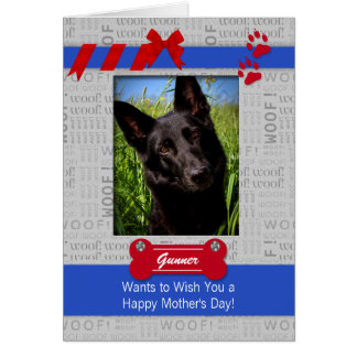 Red and Blue Mother's Day from the Dog Photo Greeting Card