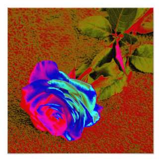 Red and blue rose photo art