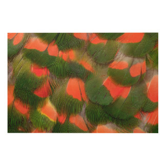 Red And Green Feather Pattern Wood Print